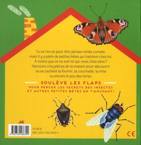 Nos voisins les insectes. Un livre à flaps pour débusquer les petites bêtes qui vivent dans la maison