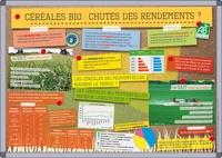Birrascarampola.it Céréales bio : chutes des rendements ? Image