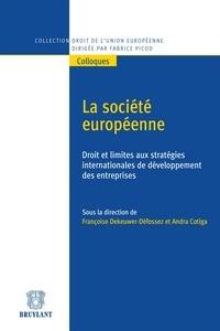 Françoise Dekeuwer-Défossez et Andra Cotiga - La société européenne - Droit et limites aux stratégies internationales de développement des entreprises.