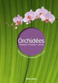 Galabria.be Orchidées - Floraison, entretien, genres Image