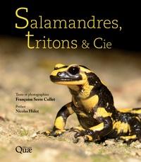 Françoise Serre Collet - Salamandres, tritons & Cie.