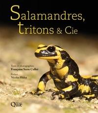 Livres télécharger iTunes gratuitement Salamandres, tritons & Cie ePub RTF