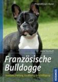 Französische Bulldogge - Auswahl, Haltung, Erziehung, Beschäftigung.
