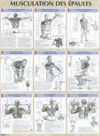 Histoiresdenlire.be Musculation des épaules - Poster Image