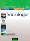 Frédéric Lebaron - Manuel visuel de sociologie.