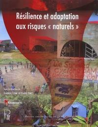 """Frédéric Leone et Freddy Vinet - Résilience et adaptation aux risques """"naturels""""."""