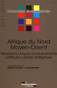 Frédéric Seigneur et Frédéric Charillon - Afrique du Nord, Moyen-Orient - Révolutions civiques, bouleversements politiques, ruptures stratégiques.