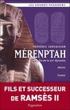 Frédéric Servajean - Mérenptah et la fin de la XIXe Dynastie.