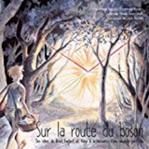 Frédérique Badaud et Emmanuel Busato - Sur la route du Boson - Des idées de Brouts Englert et Higgs à la naissance d'une nouvelle particule.