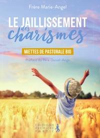 Frère Marie-Angel - Le jaillissement des charismes - Miettes de pastorale bio.