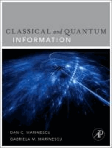 From Classical to Quantum Information Theory.