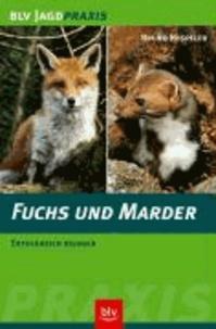 Fuchs und Marder - Erfolgreich bejagen.