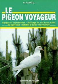G Ravazzi - Le pigeon voyageur.