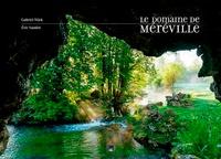 Gabriel Wick et Eric Sander - Le domaine de Méréville - Renaissance d'un jardin.