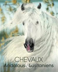 Era-circus.be Chevaux andalous et lusitaniens Image