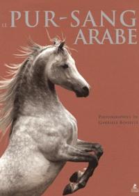 Gabriele Boiselle - Le pur-sang arabe.