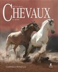 Gabriele Boiselle - Les plus beaux chevaux du monde.