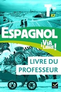 Gaëlle Rolain et Jean-Christophe Bagouet - Espagnol Tle B2 Via Libre! - Livre du professeur.