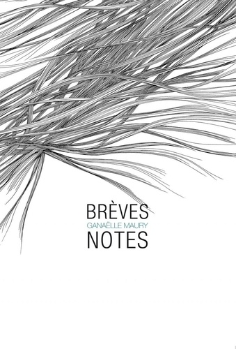 Ganaelle Maury - Brèves notes.