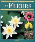 Gaud Morel - Les fleurs.