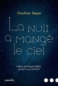 Gauthier Steyer - La nuit a mangé le ciel.