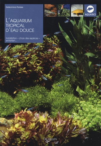 Gelsomina Parisse - L'aquarium tropical d'eau douce.