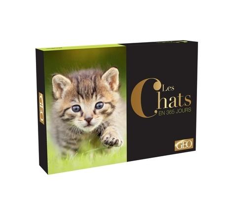 GEO - Les chats en 365 jours.