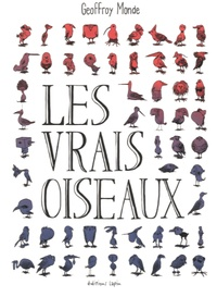 Accentsonline.fr Les vrais oiseaux Image