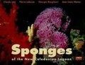 Georges Bargibant et Pierre Laboute - Sponges of the New Caledonian lagoon.