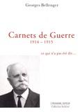 Georges Bellenger - Carnets de guerre 1914-1915 - Ce qui n'a pas été dit....