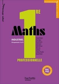 Georges Bringuier et Eliane Alquier - Maths 1e professionnelle Bac pro industriel - Groupements A et B.