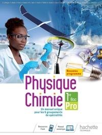 Gérald Lafforgue - Physique-Chimie 1re Bac Pro.