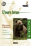Gérard Caussimont - L'ours brun.