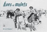 Anes et mulets.pdf