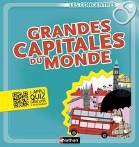 Gérard Dhôtel et Stéphane Nicolet - LES CONCENTRES  : Grandes capitales du monde - Les Concentrés.