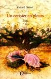 Gérard Gantet - Un cerisier en pleurs.