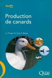 Production de canards.pdf