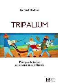 Gérard Haddad - Tripalium - Pourquoi le travail est devenu une souffrance.