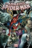 Gerry Conway et Carlo Barberi - The Amazing Spider-Man Tome 5 : Descente aux enfers.