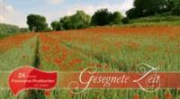 Gesegnete Zeit - Panorama-Postkarten-Buch.