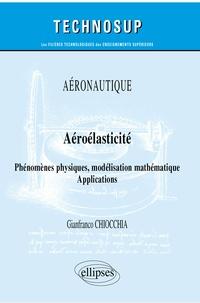 Gianfranco Chiocchia - Aéroélasticité - Phénomèmes physiques, modélisation mathématique, applications.