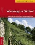 Gianni Bodini - Waalwege in Südtirol - Bildwanderführer durch eine untergehende Kultur.