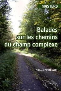 Gilbert Demengel - Balades sur les chemins du champ complexe - Cours, illustrations et exercices.