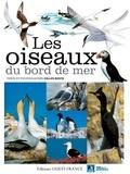 Gilles Bentz - Les oiseaux du bord de mer.