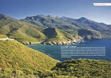 Corse. 40 belles balades