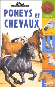 Gilles Delaborde et Gilbert Houbre - Poneys et chevaux.