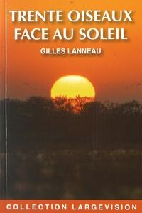 Gilles Lanneau - Trente oiseaux face au soleil.
