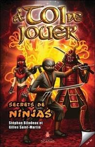 Gilles Saint-Martin et Stéphan Bilodeau - A toi de jouer  : Secrets de ninjas.