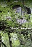 Gilles Tiberghien - La nécessité des cabanes.