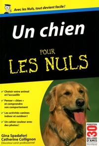 Feriasdhiver.fr Un chien pour les nuls Image